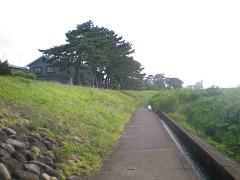 20090714-8.JPG
