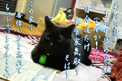 ノエルTributeToちゃー子さん.jpg