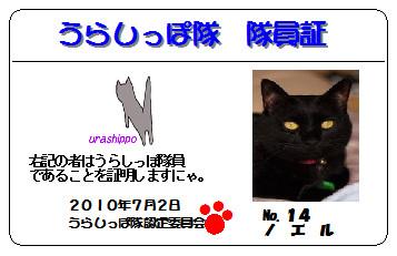 urashippo-no_14-noel-b60b1.jpg