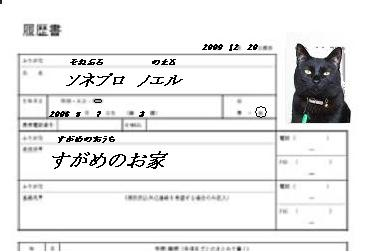 履歴書.JPG