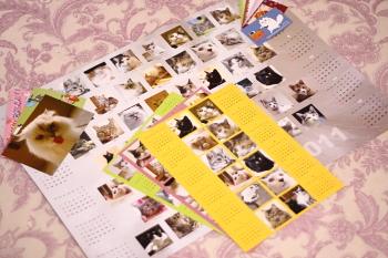 20101019-01.JPG