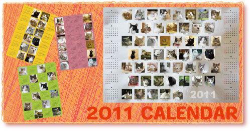 2011cal.jpg