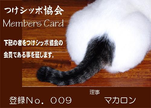 祝!つけシッポ協会.jpg
