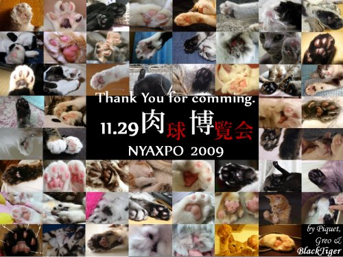 nyaxpo2009card2-28ed1.jpg